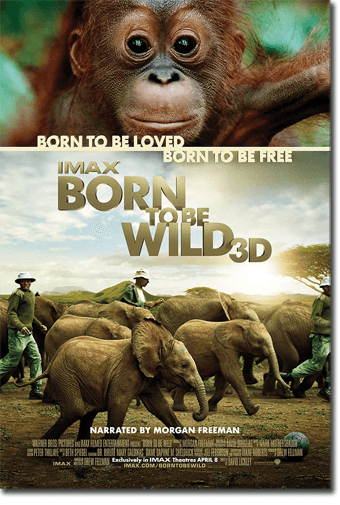 Born to be Wild IMAX