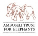 Amboseli Trust for Elephants - Cynthia Moss
